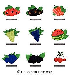 fruit fresh food set illustration in colorful