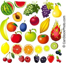 FRUIT Illustration Big Collection Mix - Vector