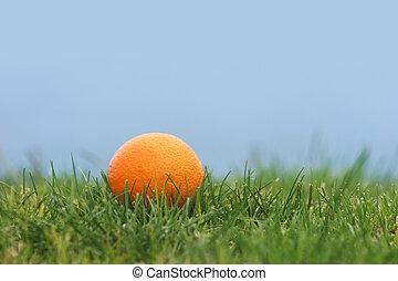 Fruit in grass