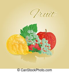 Fruit like woodcut vector
