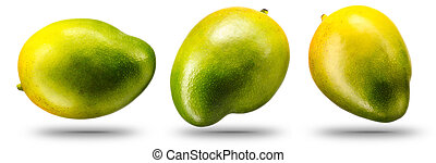 fruit, mango, vrijstaand, verzameling, witte