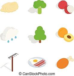 Fruit meal icons set, isometric style