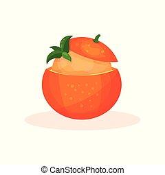 Fruit orange dessert vector Illustration on a white background