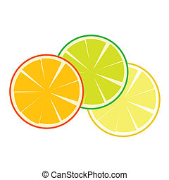 fruit orange vector