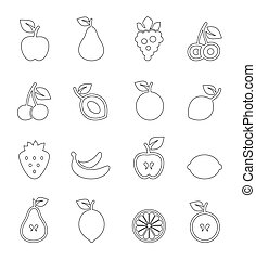 Fruit outline