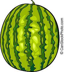 fruit, pastèque, dessin animé, illustration