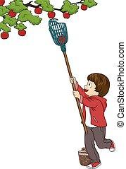 Fruit Picking Boy
