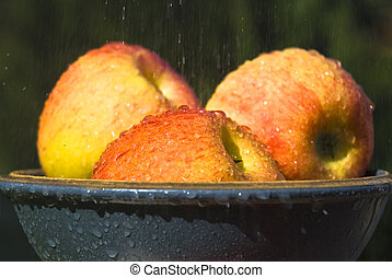 Fruit - Apples in a bowl