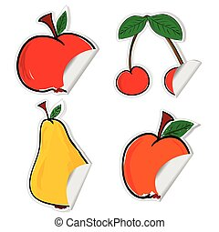 fruit sticker vector illustration