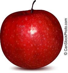 fruit., vecteur, pomme, rouges
