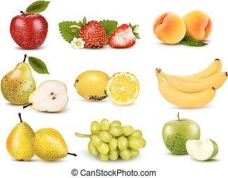 fruit., verschieden, vector., gruppe, groß