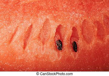 fruit, watermeloen, textuur, achtergrond