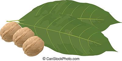 Fruit with leaf