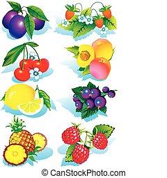 fruits.