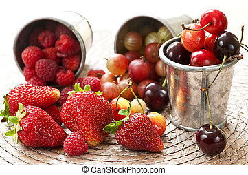 Fruits and berries