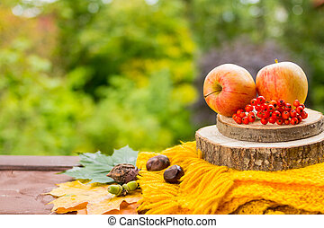 Fruits and nuts, yellow scarf on the wooden table outdoor, cozy autumn.still life with apples, Rowan berries, chestnuts and acorns.Bright autumn still life with gifts of autumn.Thanksgivings day.Copy space