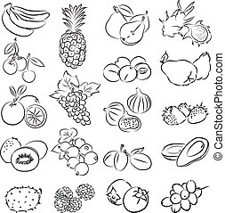 fruits - vector illustration of fruits collection in black...