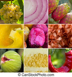Fruits collage