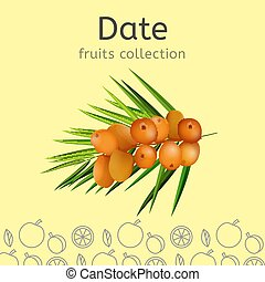 Fruits collection image