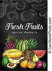 fruits, ferme fraîche, croquis, nourriture, tableau noir