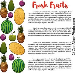 Fruits food nutrition vector banner of poster