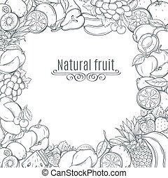 Fruits hand drawn  frame.