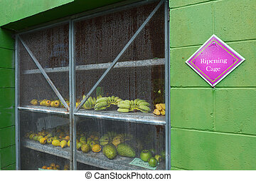 Fruits in a ripening cage.