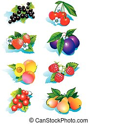 Juicy fruits on a white background.
