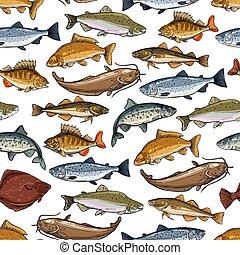 fruits mer, modèle, mer, animaux marins, océan, fish
