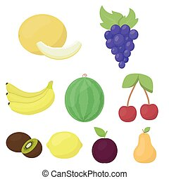 Fruits set icons in cartoon style. Big collection of fruits vector symbol stock illustration