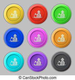 fruits set with pineapple apple icon sign. symbol on nine round colourful buttons. Vector