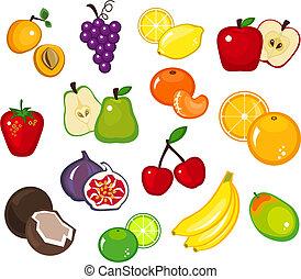 Fruits - Various fruit illustrations on white background