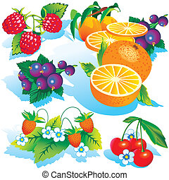 Various juicy fruits on a white background. Vector art-illustration.
