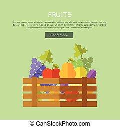 Fruits Vector Web Banner in Flat Design.