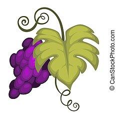 frukt, ikon, druva, winemaking, isolerat, skörd, bukett