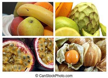 frukt, kollektion, 1