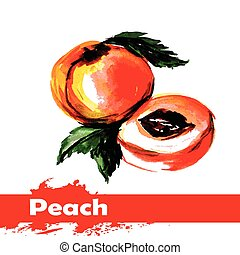 frukt, målning, vattenfärg, bakgrund., persika, hand, oavgjord, vit