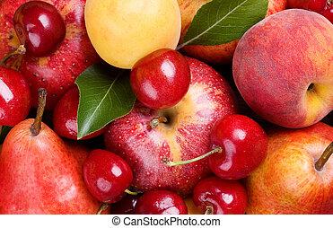 frukter, och, bär