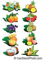 frukter, och, nuts.