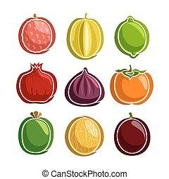 frukter, vektor, sätta, färgrik, ikonen