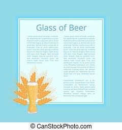 frumento, testo, vetro, birra, fondo, manifesto