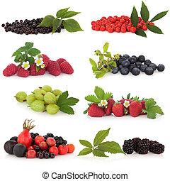 fruta baga, amostra