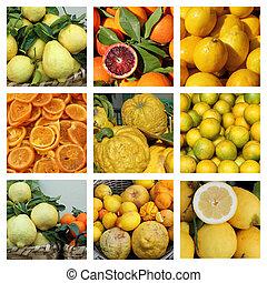 fruta cítrica, cobrança