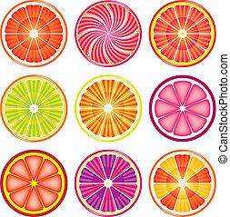 fruta cítrica, conjunto, vector, colorido, rebanadas