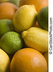 fruta cítrica, selección, fruits