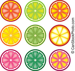 fruta cítrica, vector, colorido, rebanadas