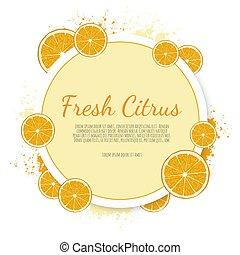 fruta cítrica, vetorial, label., laranja, bandeiras