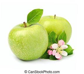 fruta, maçãs verdes, maduro