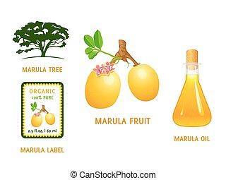 fruta, marula