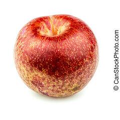fruta, pluot, isolado